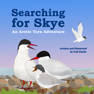 Searching for Skye Cover
