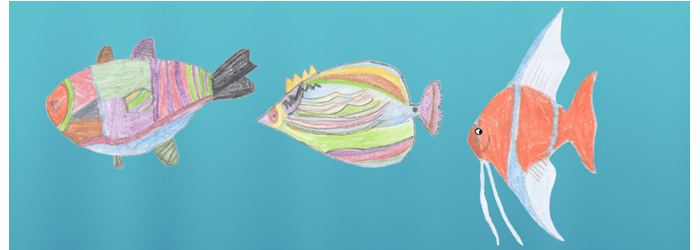 Tamms fish 2