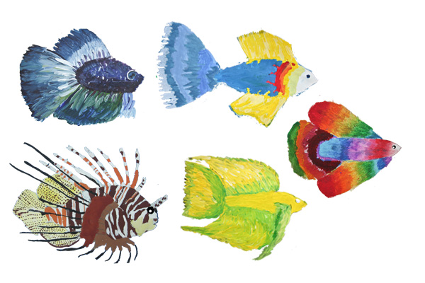 five fish for blog 1