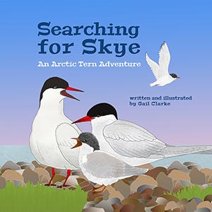 Searching for Skye
