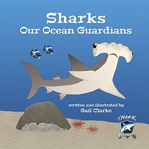Shark Cover 300x300 for website rgb